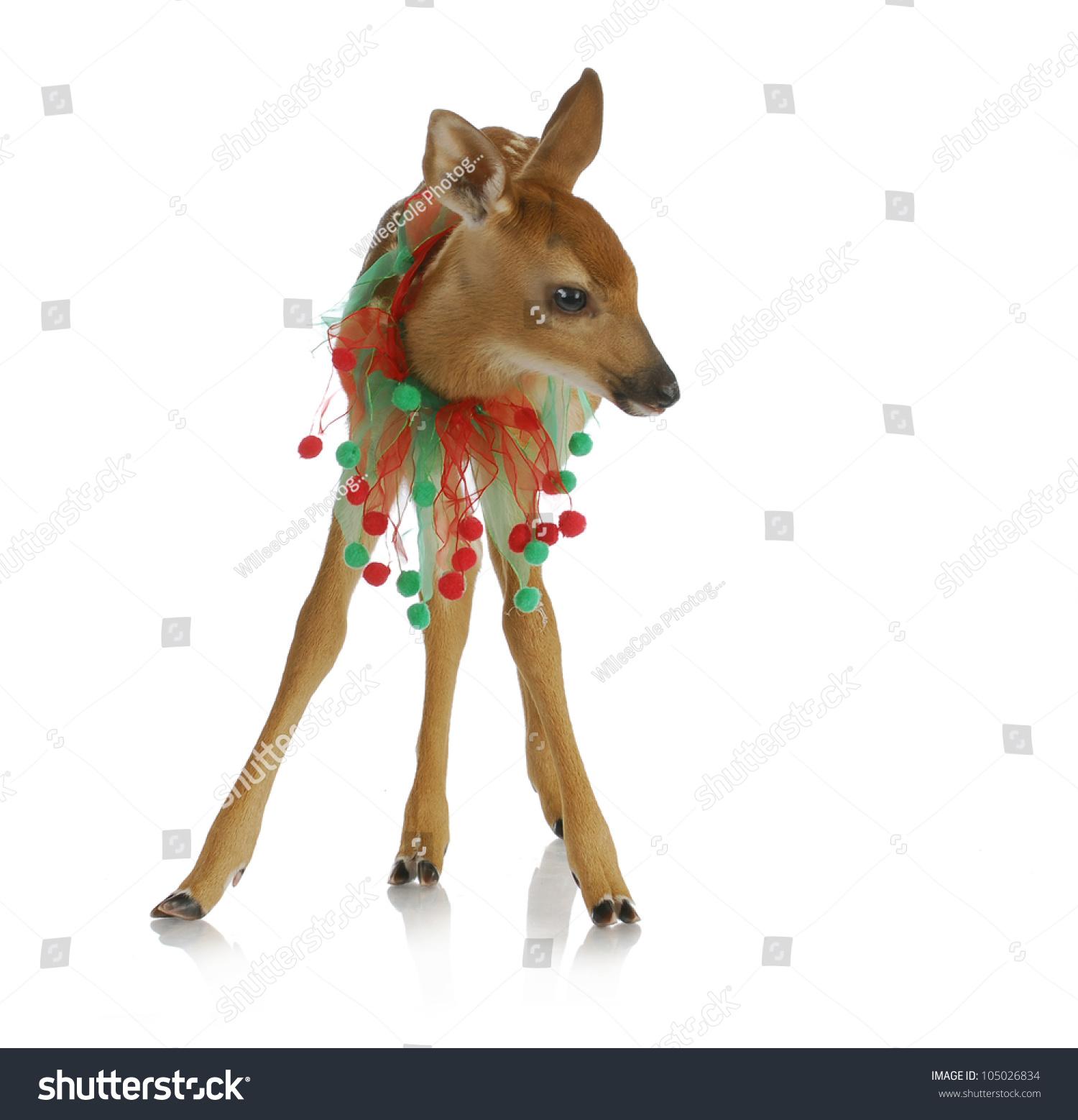 纸杯小鹿的手工制作方法