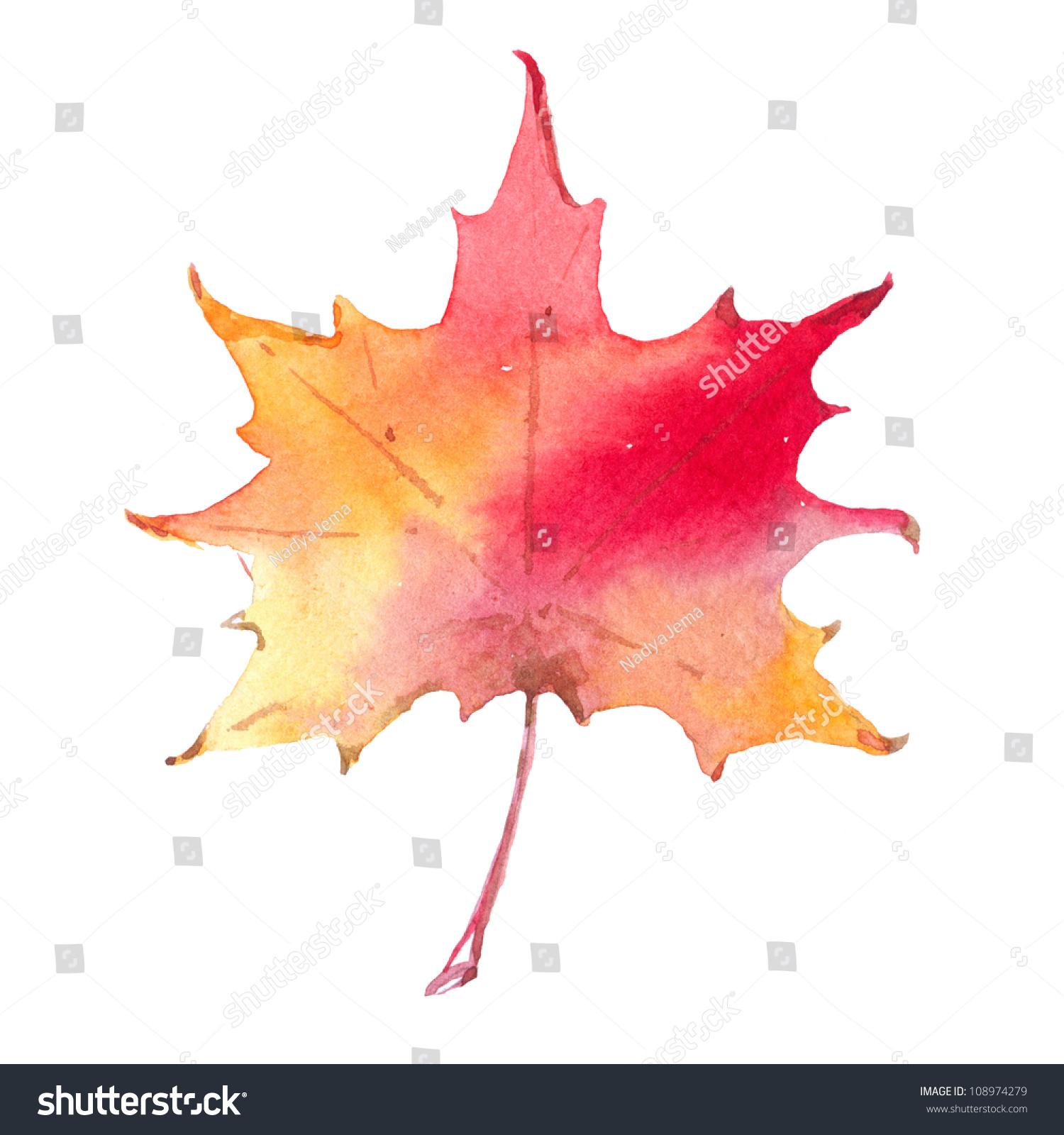 丰富多彩的秋叶孤立在白色背景.水彩插图-物体,自然图片