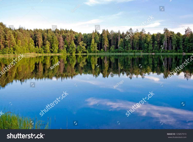 映在湖面上的松树林和天空.俄罗斯