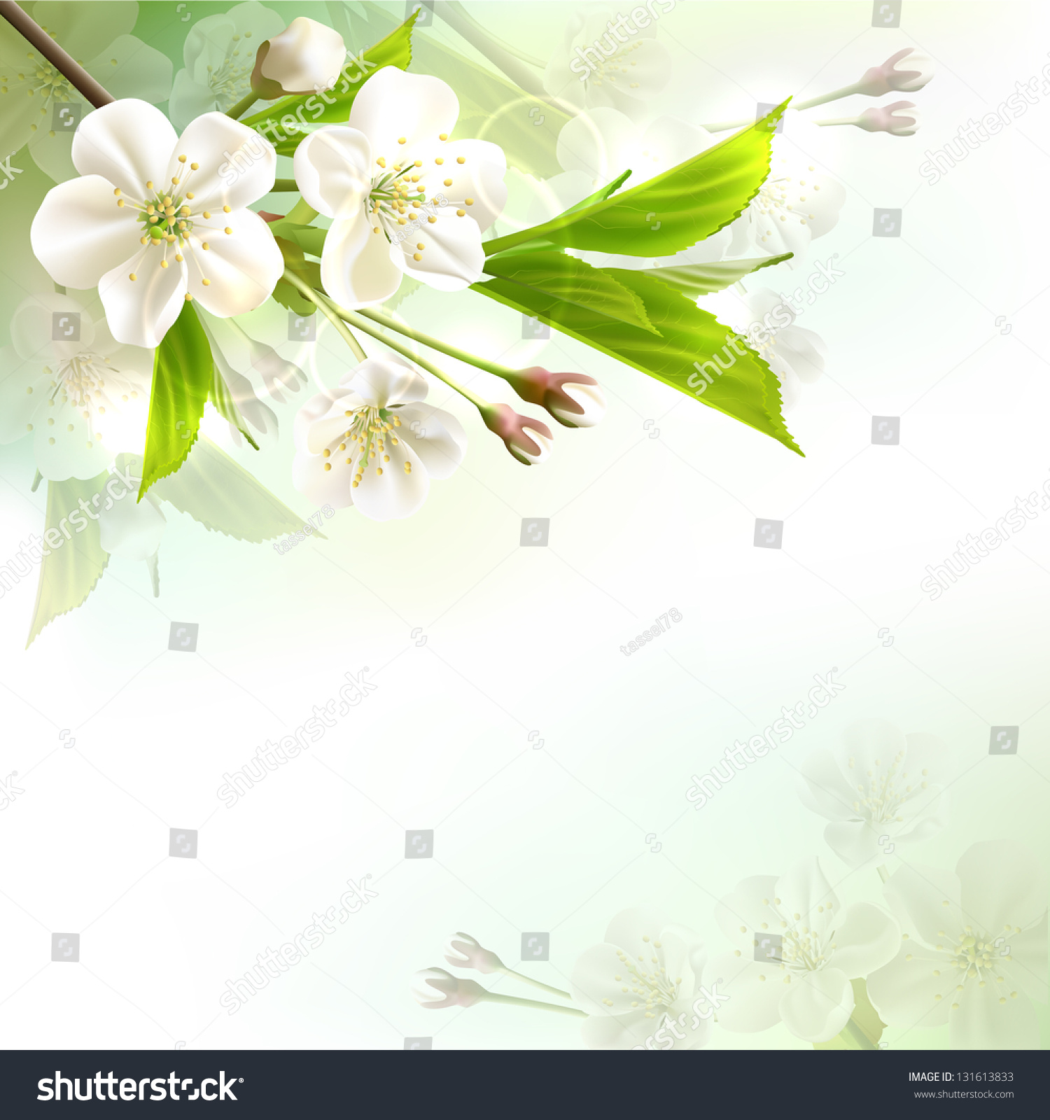 与白色的花朵开花树枝散景绿色背景.-背景/素材,自然
