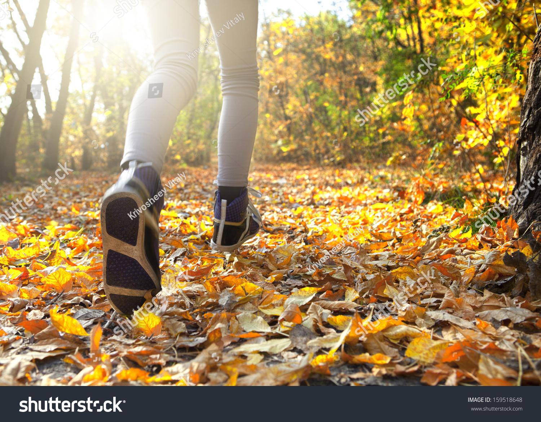 秋天的森林里晨跑-自然,人物-海洛创意(hellorf)-中国图片