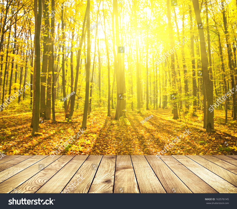 美的自然背景.木地板.背景是