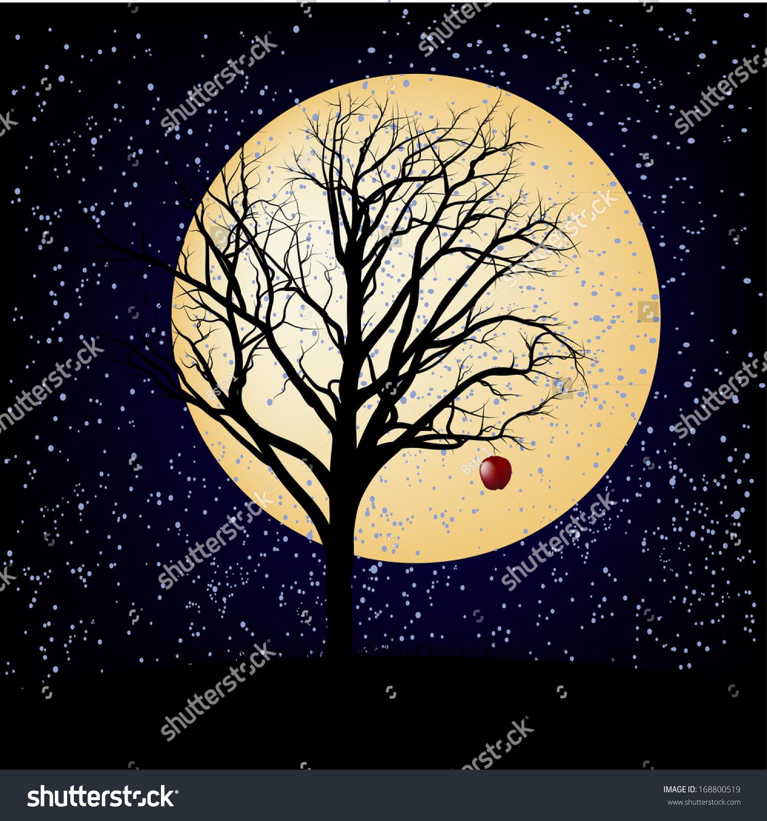 裸露的苹果树的明星-自然,公园/户外-海洛创意()-中国