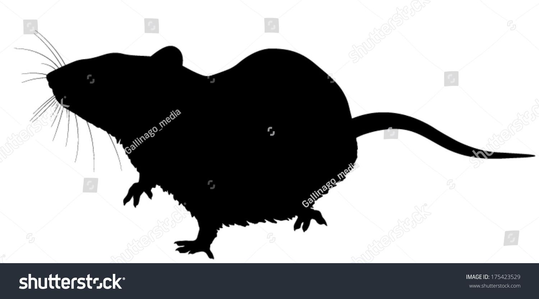 矢量剪影的老鼠.须作为一个单独的层.