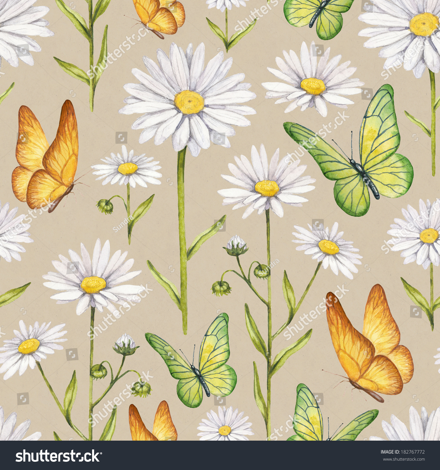 洋甘菊鲜花和蝴蝶插图.水彩无缝模式-背景/素材,自然
