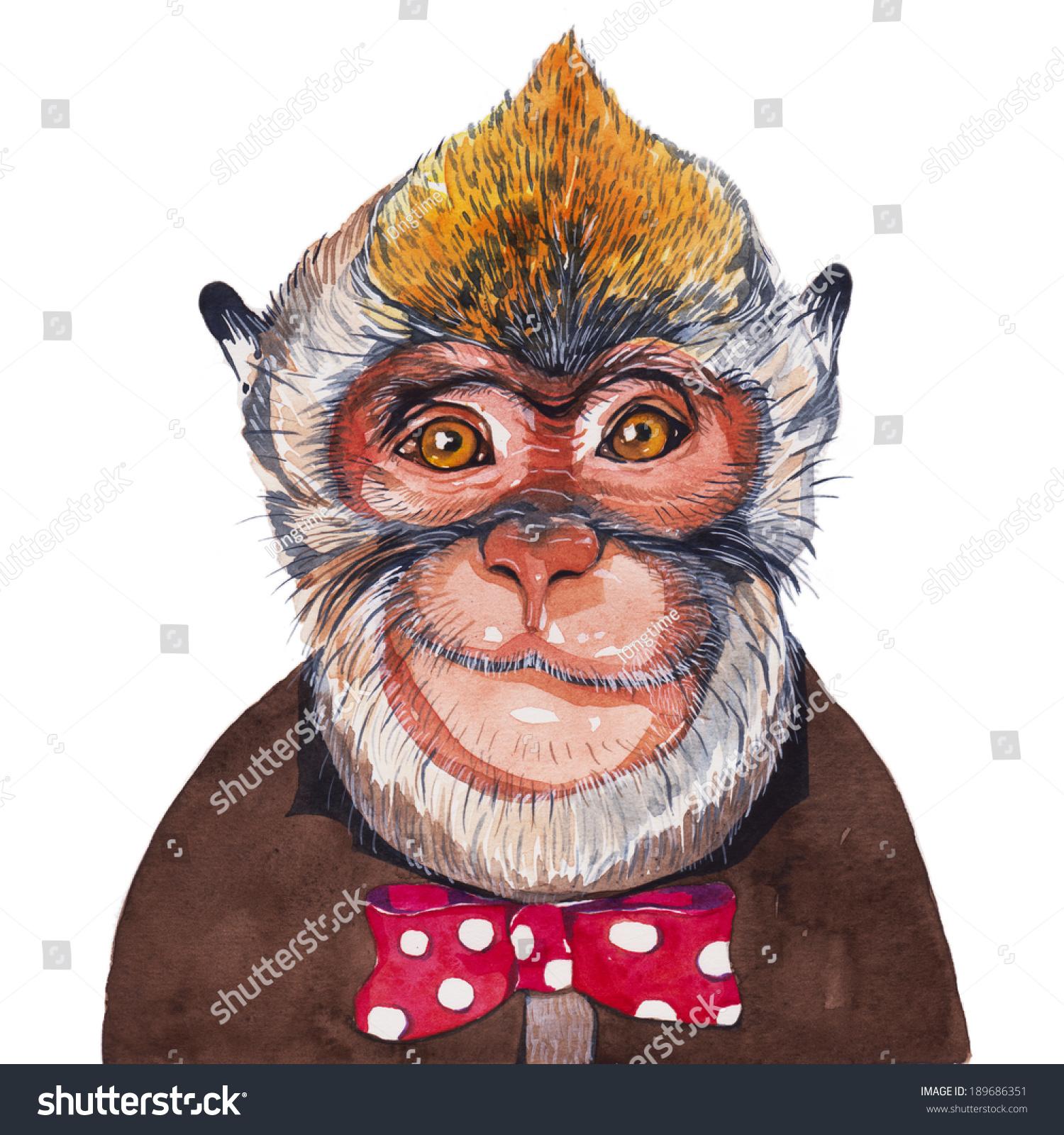 猴子,水彩画-动物/野生生物,艺术-海洛创意(hellorf)