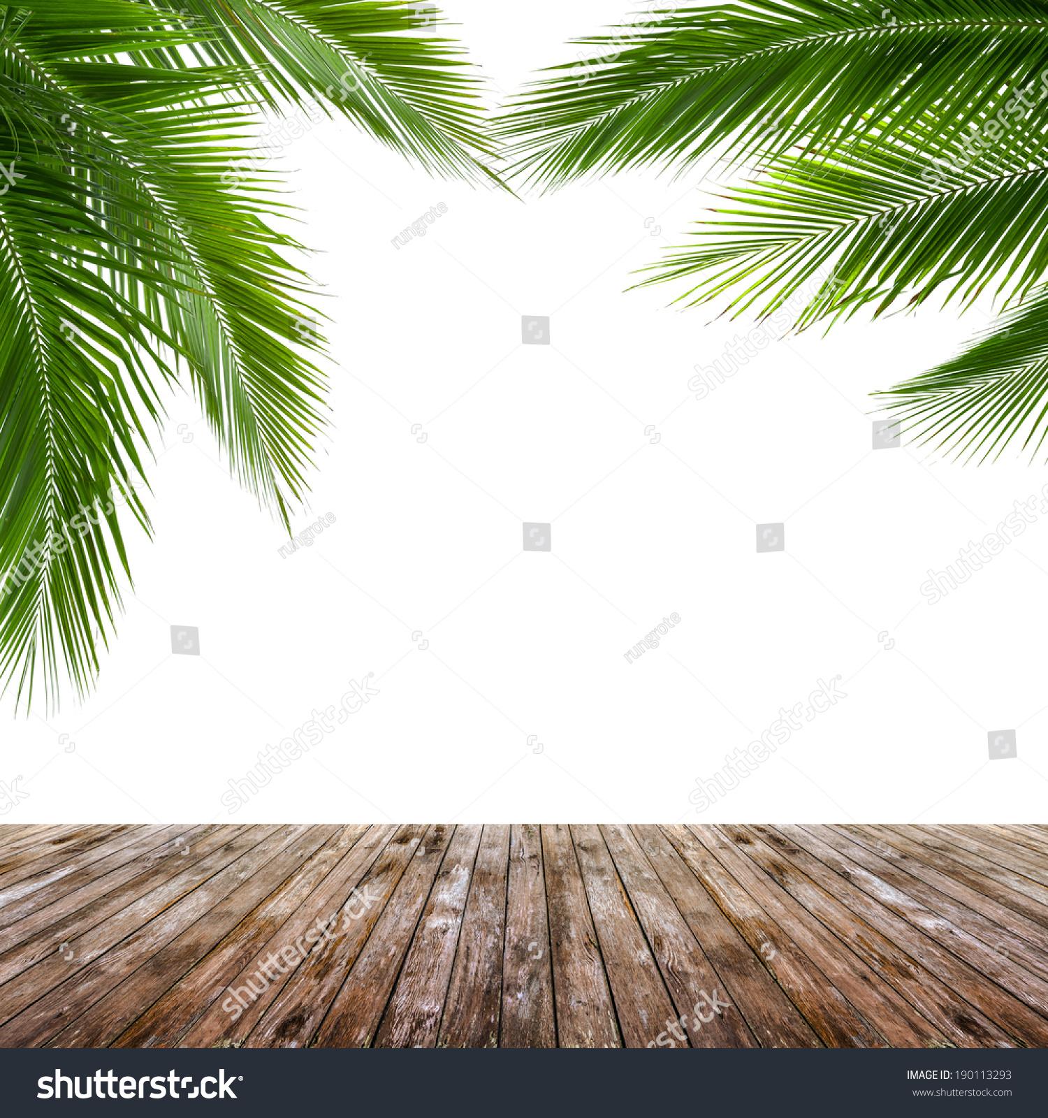 椰子树叶和木地板孤立在白色背景