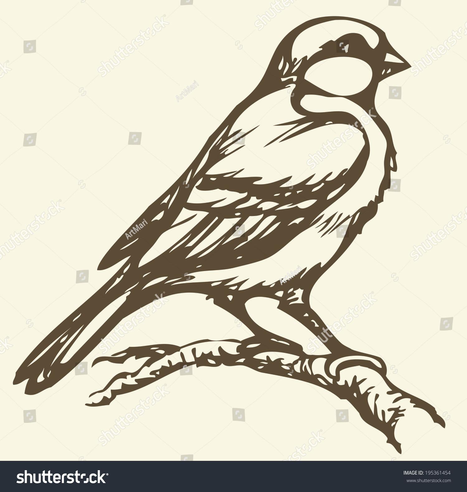 """矢量图单色素描系列的""""鸟"""""""
