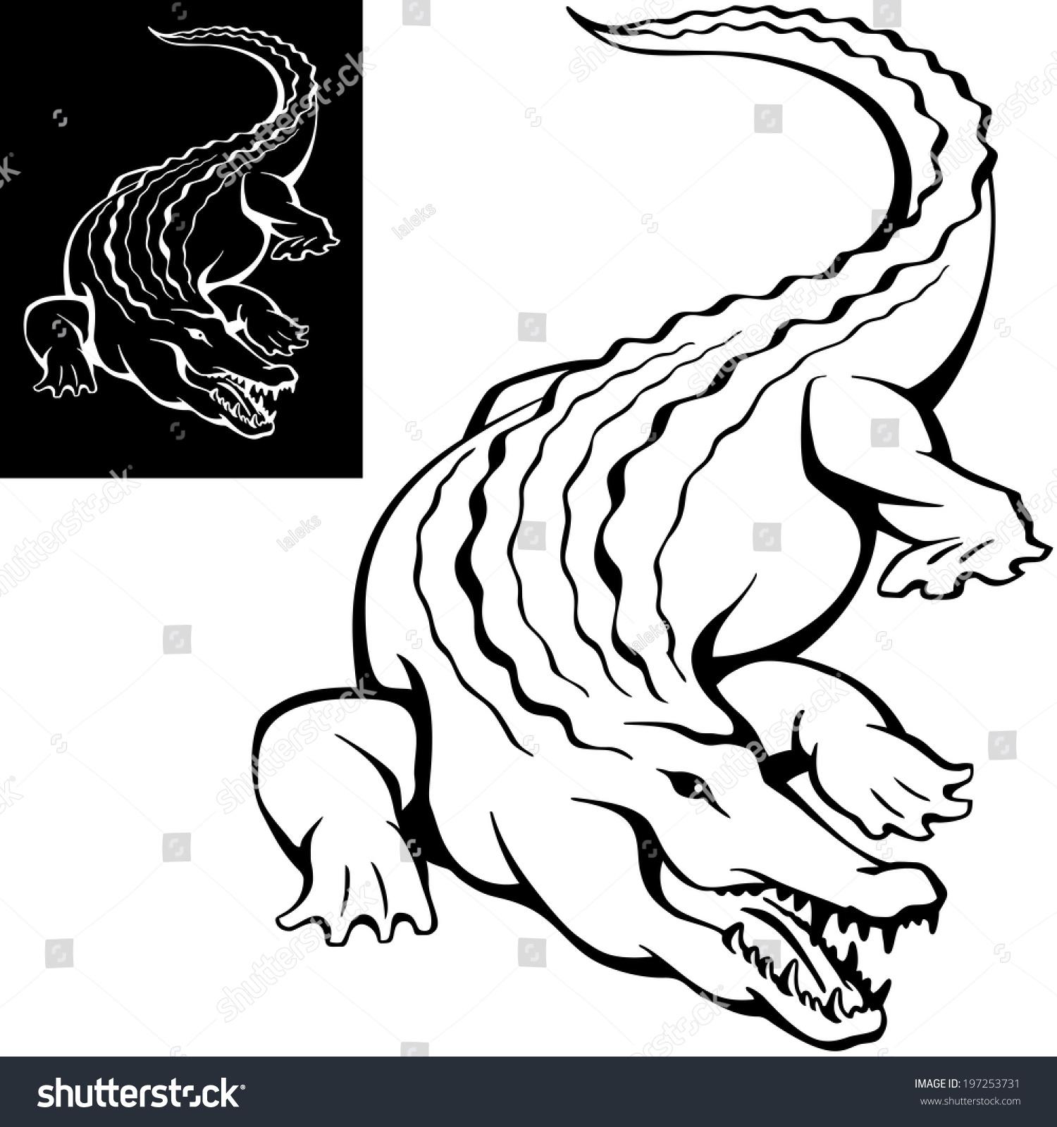 各种各样的动物牙齿简笔画