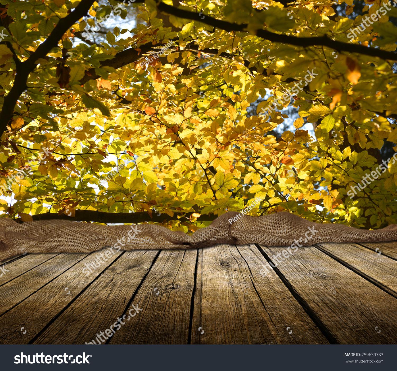 带着秋天森林背景的木甲板桌子.准备产品表现蒙太奇.图片