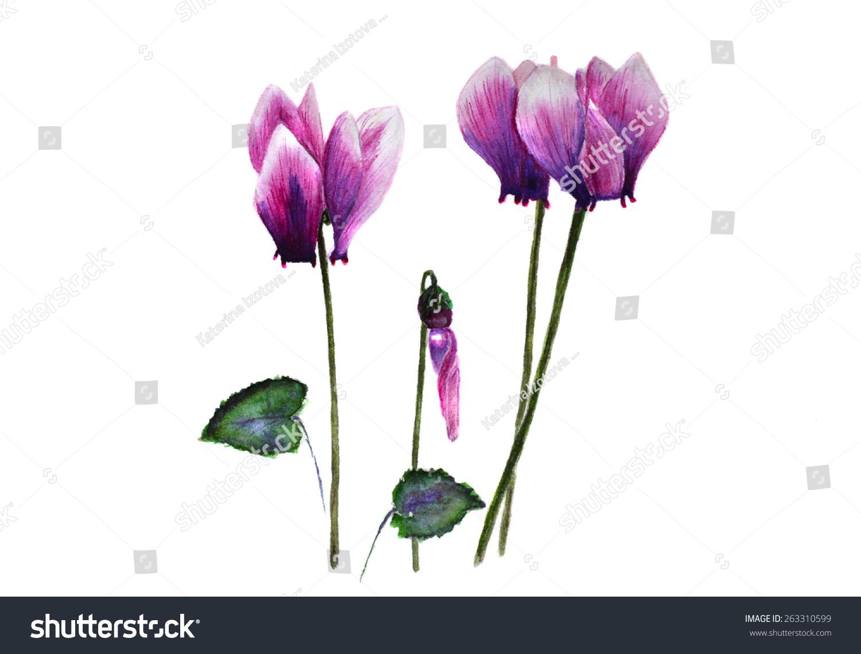 微信头像风景花卉图片