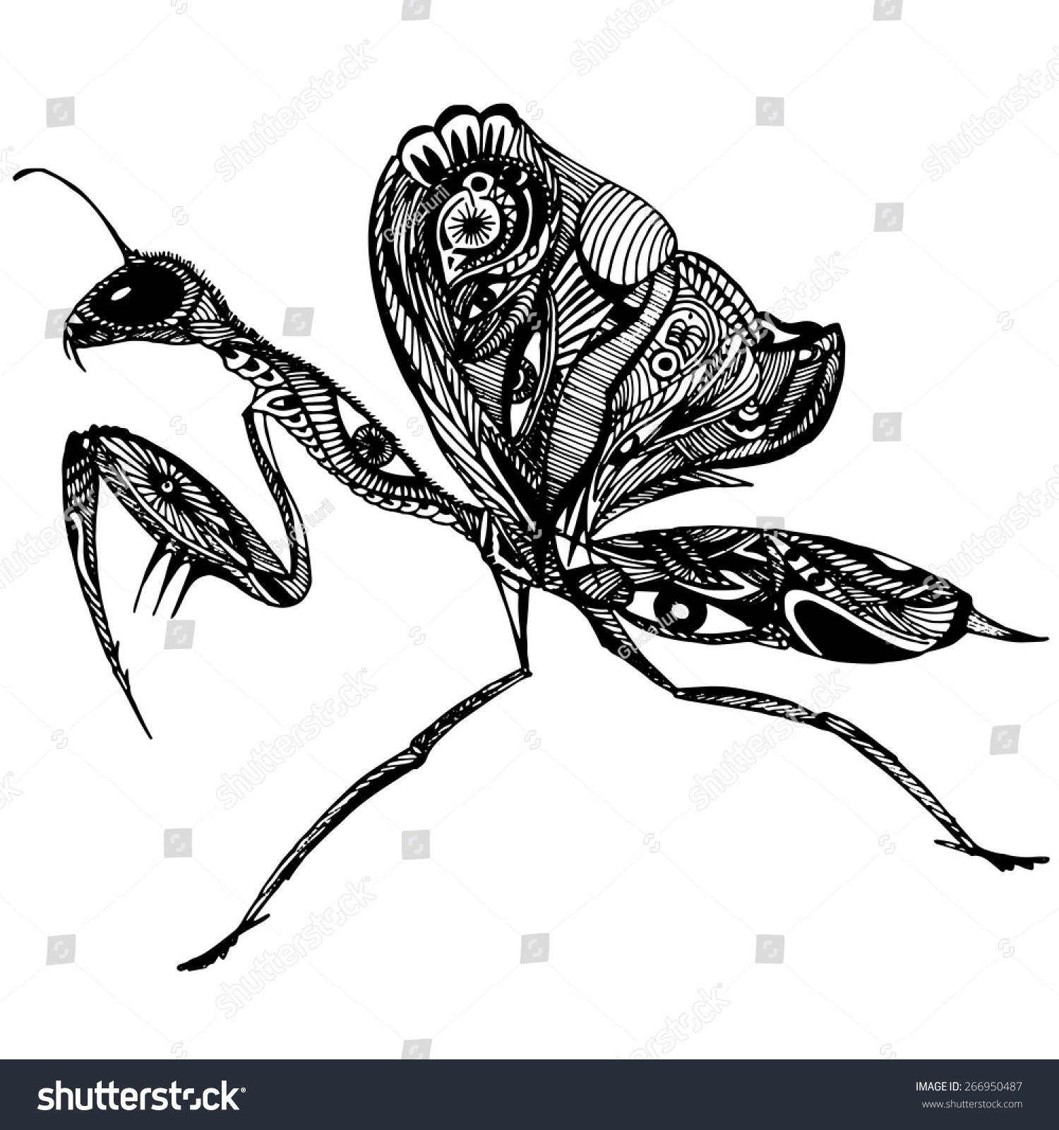 花纹矢量螳螂-动物/野生生物