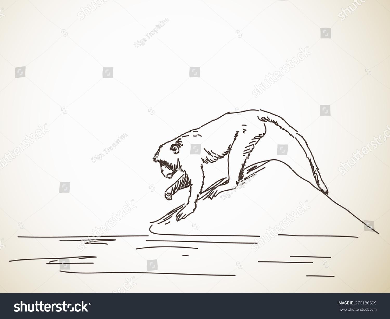 动物失去家园简笔画