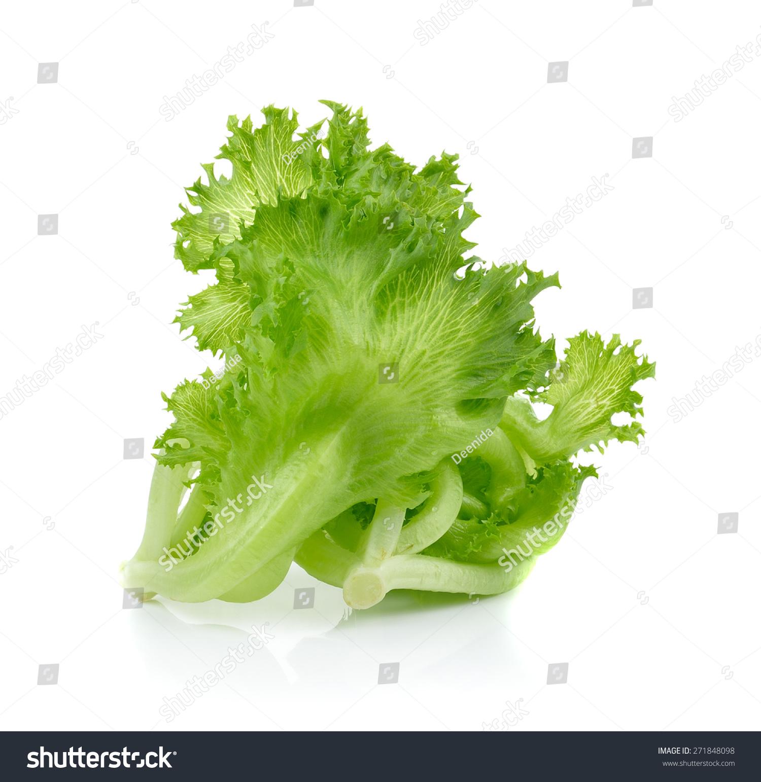 白底绿色生菜-食品及饮料,自然-海洛创意(hellorf)--.