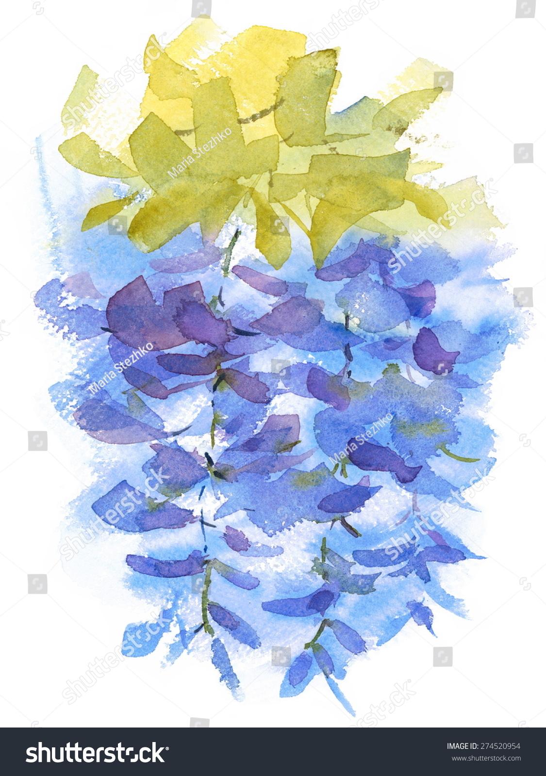 水彩蓝花紫藤花香抽象的手绘背景纹理插图孤立在白色