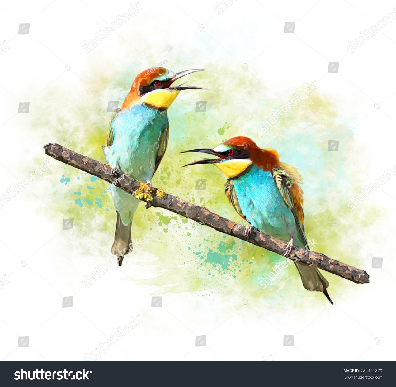鸟食水彩画形象-动物/野生生物,艺术-海洛创意()-中国