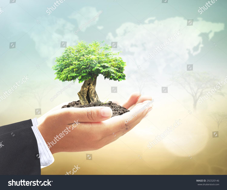 植物或大树模糊世界地图的云在美丽的海洋和森林背景