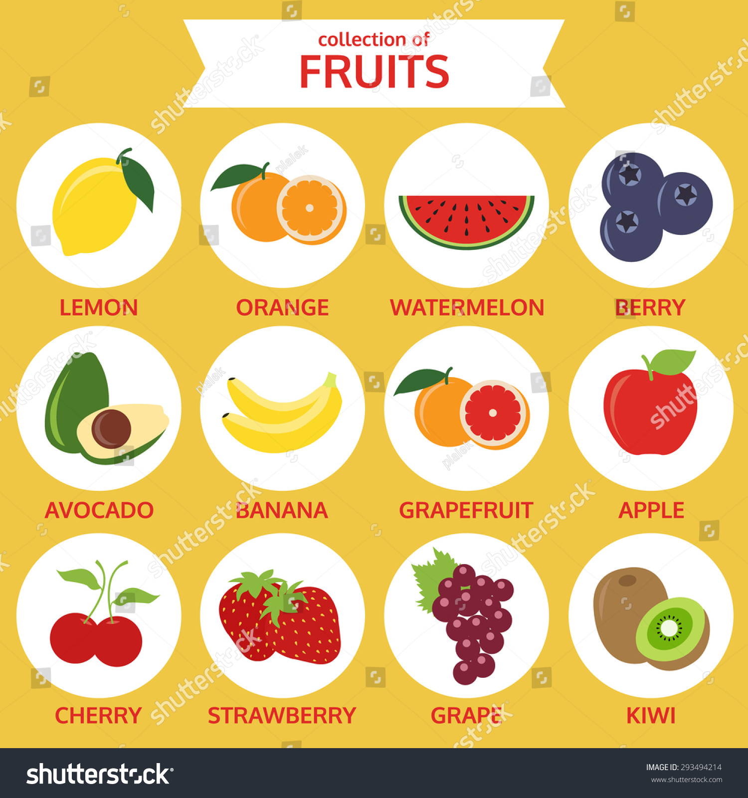 水果图标的集合,食物矢量插图