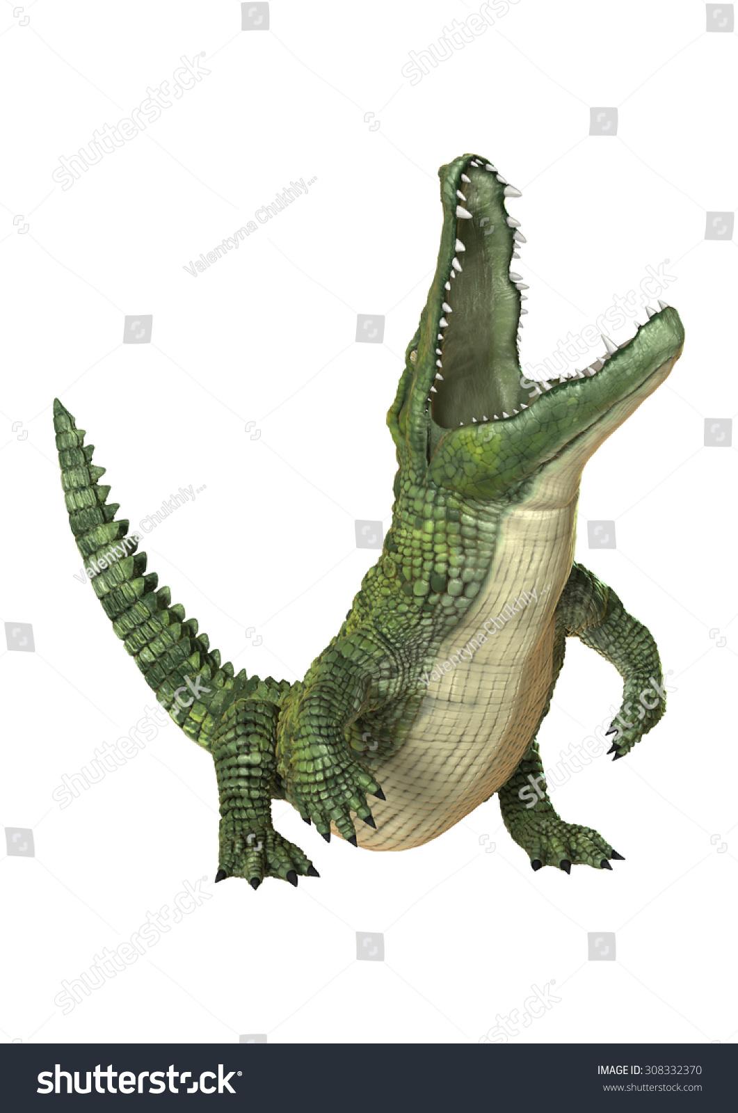白色背景下绿色鳄鱼潜水的三维数字渲染-动物/野生
