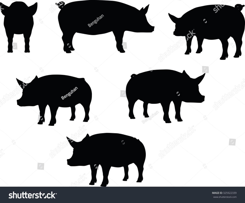猪轮廓矢量图像,卷曲的尾巴的姿势,孤立在白色背景