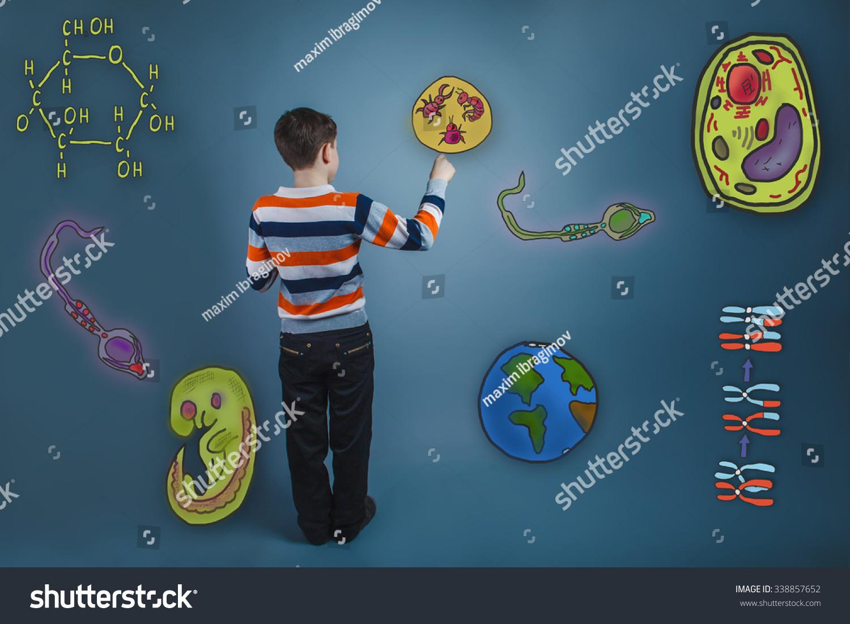 提高他的手画图标生物学教育形成的胚胎图片