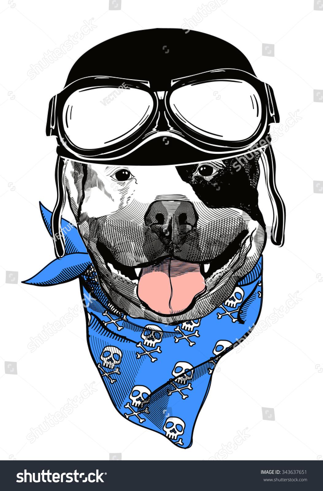 动物创意设计海报